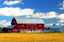 Farm Insurance in Newton and Iowa Falls, IA